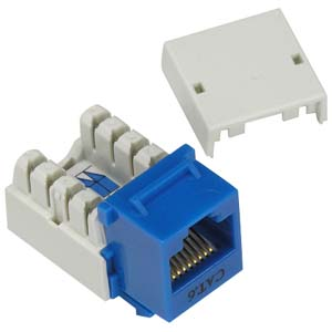 CAT6 keystone Jack Blue RJ45 110 Type